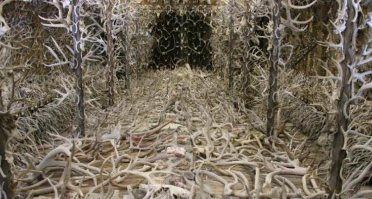 The Hall of Antlers